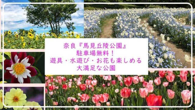 奈良 馬見丘陵公園 花畑 遊具 水遊び