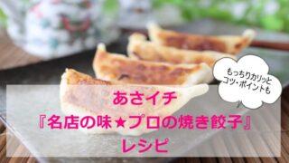 あさイチ『名店の味 プロ 焼き餃子』レシピ・焼き方 包みから ジューシー ポイントコツ詳細まとめ