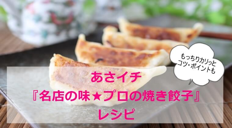 あさイチ『名店の味|プロ|焼き餃子』レシピ・焼き方 包みから ジューシー ポイントコツ詳細まとめ